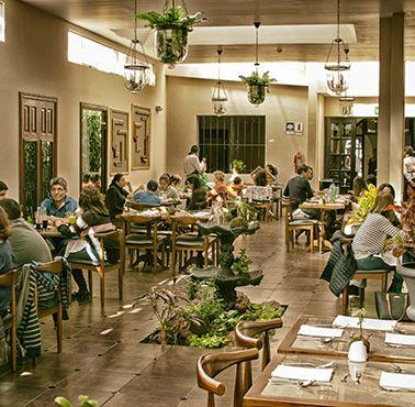 CASTA FIOR Restaurante - Reserva en restaurantes de Comida FUSIóN - AREQUIPA - MESA 24/7   AREQUIPA - Perú